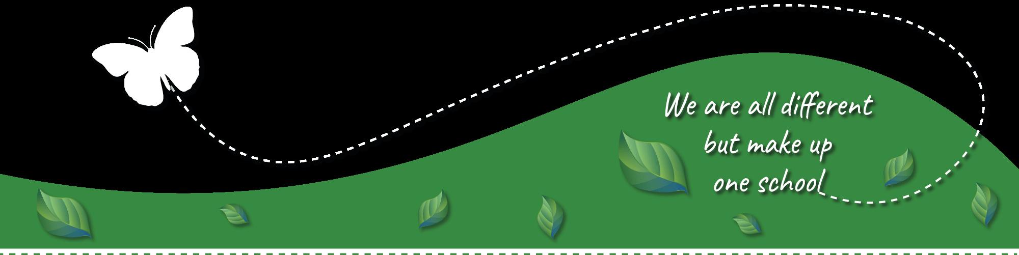 Header bottom graphic